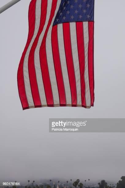 American flag on the Promenade