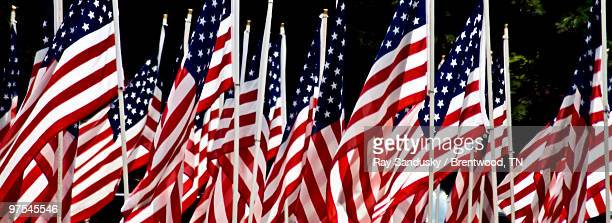 American Flag Panorama