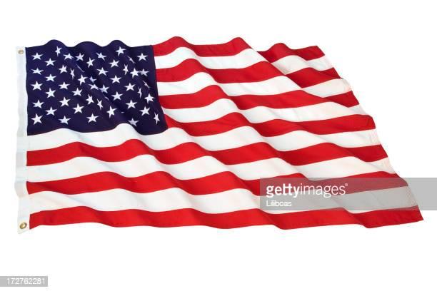 American Flag Series (XL)