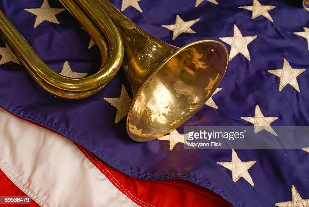 American flag with musical instrument