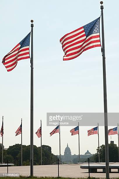 Drapeaux américains et Capitole, Washington DC, États-Unis