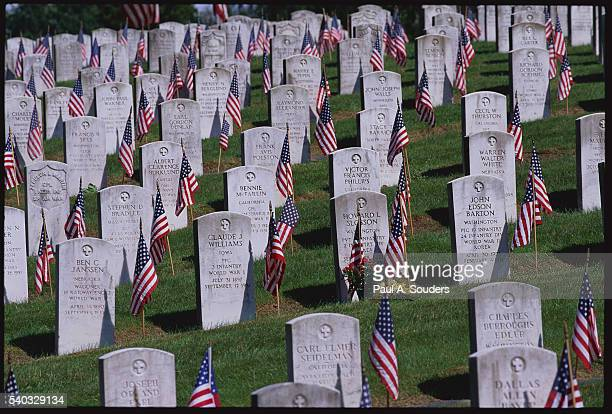American Flags and Grave Markers