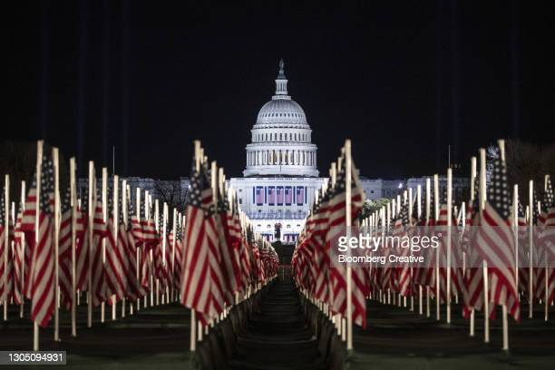 american flags and the u.s. capitol - senate stock pictures, royalty-free photos & images