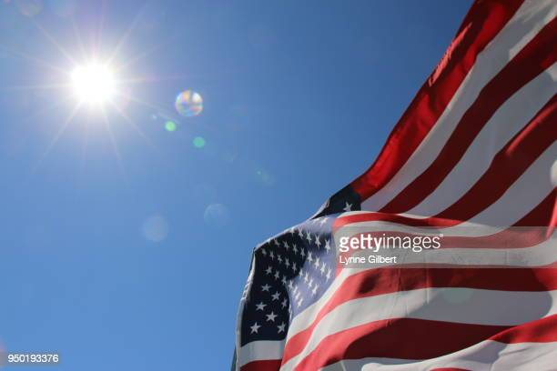 American flags blown in the wind in Malibu California