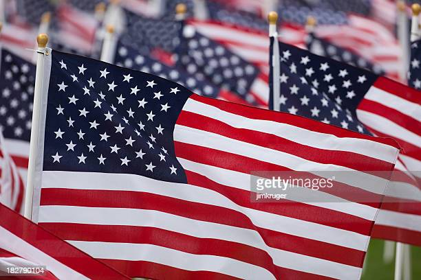 american flags fill the frame. - memorial day remembrance stock pictures, royalty-free photos & images