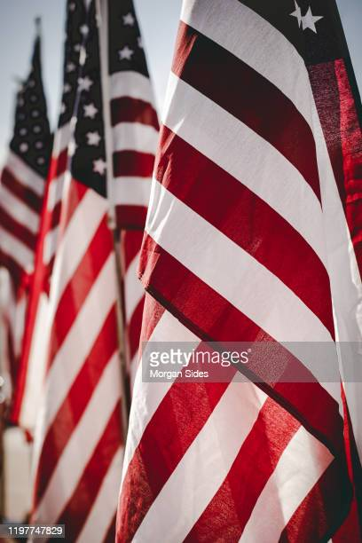 american flags in a line - us president stock pictures, royalty-free photos & images