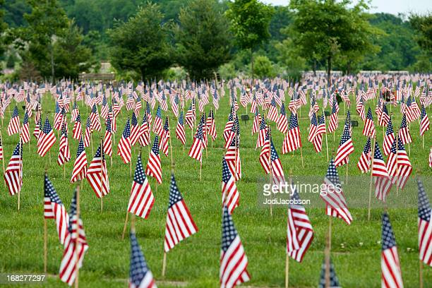 American  flags on  veteran's graves
