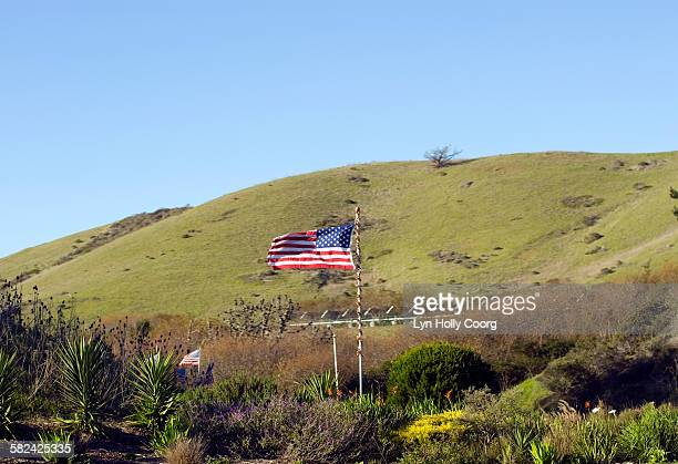 american flags wrapped in tinsel - lyn holly coorg stock pictures, royalty-free photos & images
