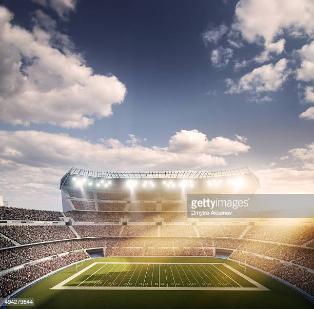american football stadium - football body paint stock photos and pictures