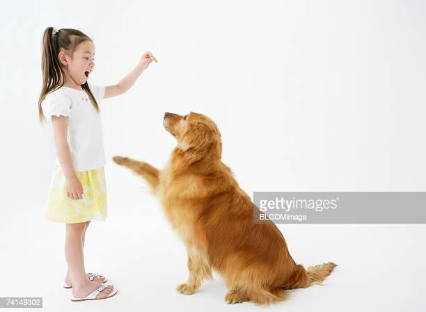 American girl playing with dog