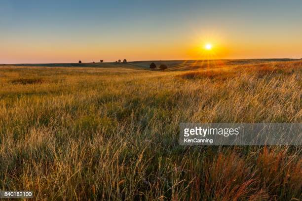 american great plains prairie at sunrise - great plains stock pictures, royalty-free photos & images