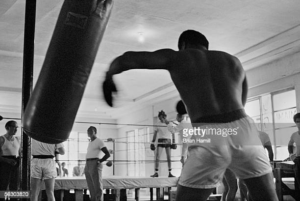 American heavyweight boxer Muhammad Ali hits a hanging punching bag as he trains for his upcoming fight with Joe Frazier Miami Florida 1971