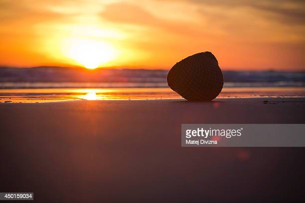 American helmet of a DDay reenactment enthusiast lies on the Omaha Beach during sunrise on June 6 2014 near ViervillesurMer France Friday 6th June is...