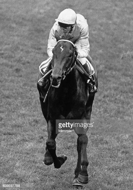 American jockey Steve Cauthen in action to win the Epsom Derby on Slip Anchor. 5th June 1985 .