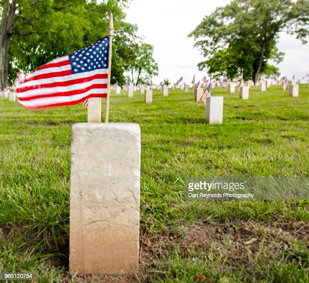 american military cemetery - prisoner of war stock pictures, royalty-free photos & images