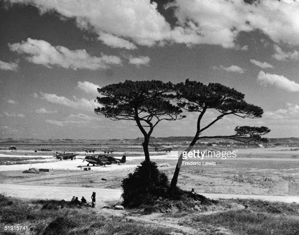 American military personnel sit and stand under a tree by the edge of an American airfield on Okinawa Island, Japan, Spring 1945. On the airfield sit...