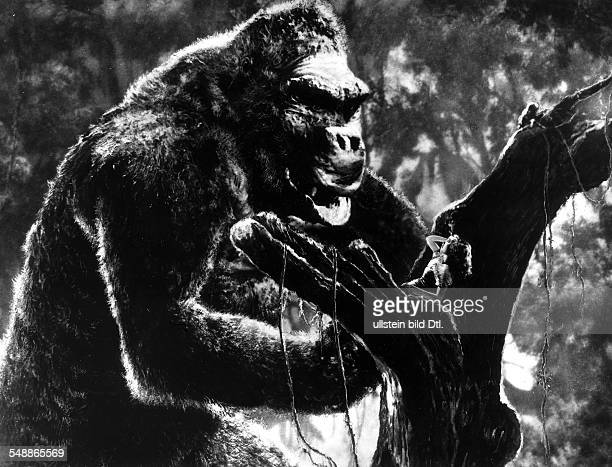 American movies in the 1930ies Scene from the movie 'King Kong' Directed by Ernest B Schoedsack Merian C Cooper USA 1933 Film Production RKO Pictures...