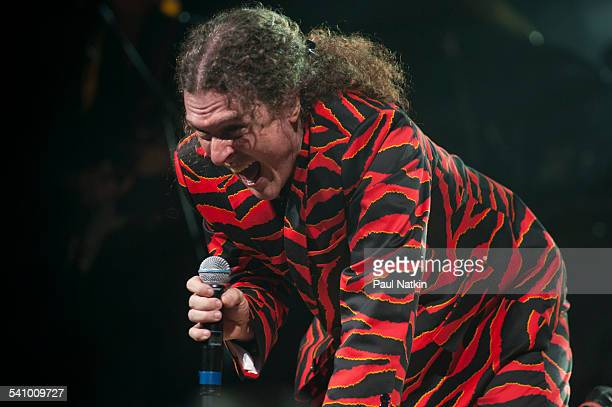 American musician and comedian Weird Al Yankovic in a tigerstriped suit performs onstage at the Star Plaza Theater Merrillville Indiana July 9 2010