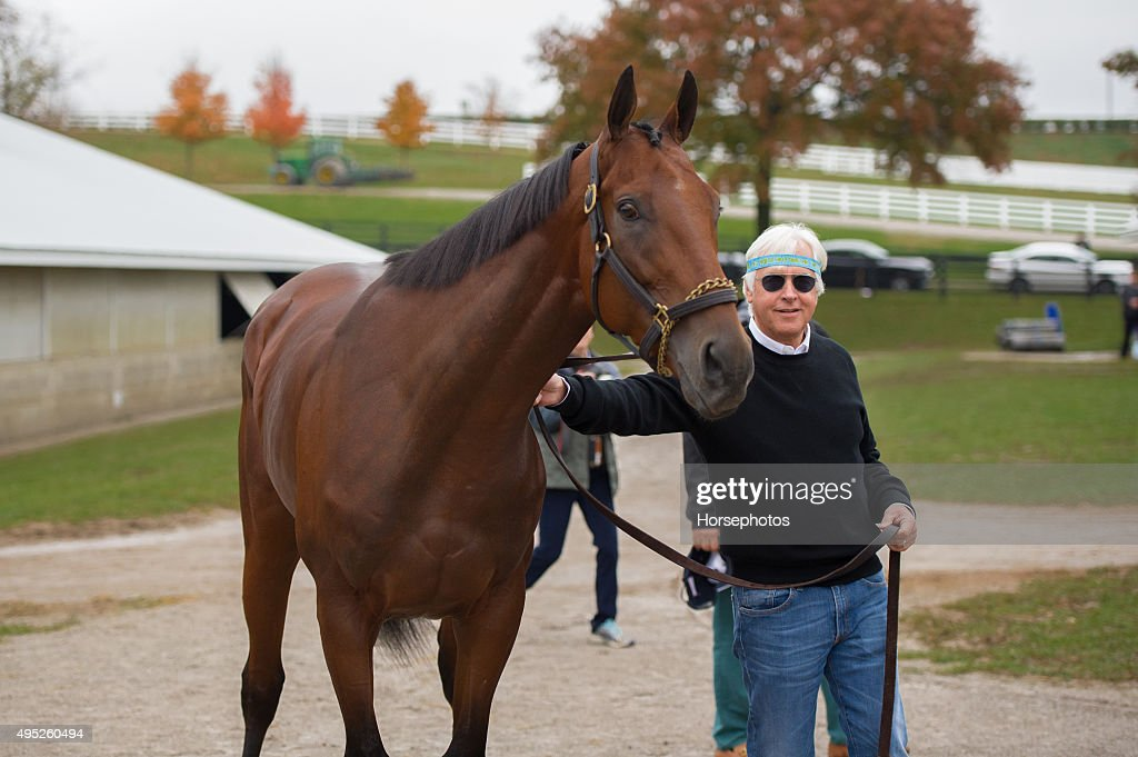 2015 Breeders' Cup : News Photo