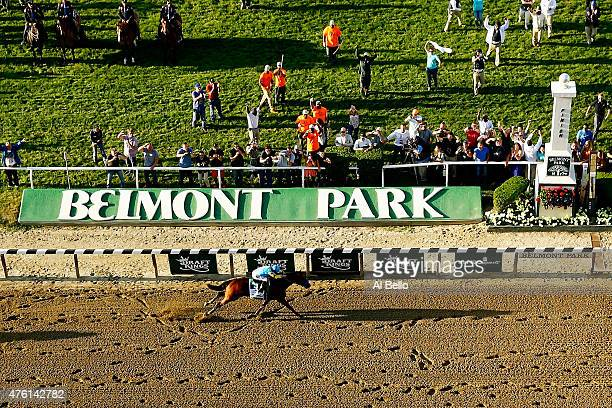 American Pharoah ridden by Victor Espinoza crosses the finish line to win the 147th running of the Belmont Stakes at Belmont Park on June 6 2015 in...