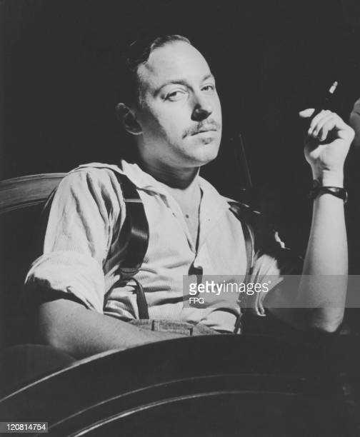American playwright Tennessee Williams , circa 1955.