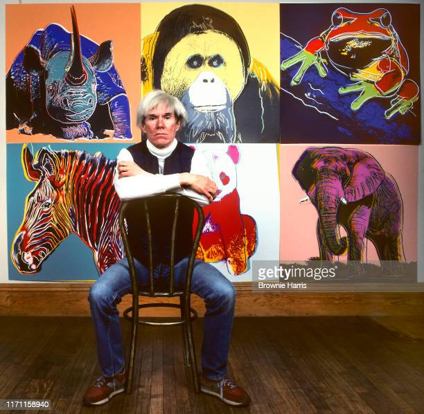 American Pop artist Andy Warhol sits in front of several paintings in his 'Endangered Species' at his studio, the Factory, in Union Square, New York,...