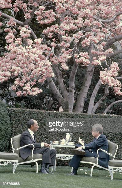 American president Jimmy Carter and Egyptian president Anwar elSadat have tea on the White House lawn 1980
