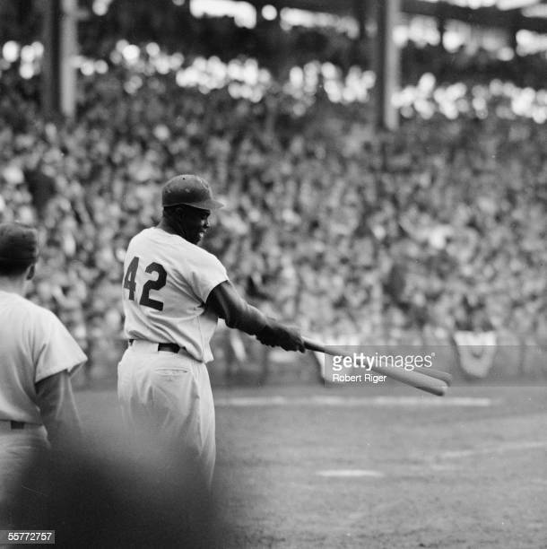 American professional baseball player Jackie Robinson of the Brooklyn Dodgers swings two bats in the ondeck circle at Ebbets Field during the 1955...