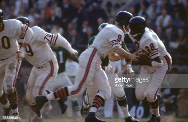 American professional football player B ill Wade quarterback fo the Chicago bears hands off the ball to teammate runningback Willie Gilmore during a...