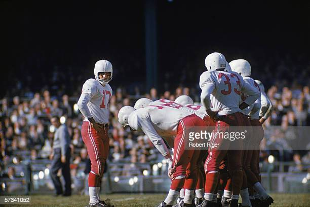 American professional football player MC Reynolds quarterback for the Chicago Cardinals stands on the field with his hands on hips between plays...