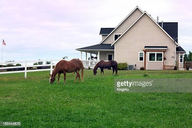american gama house - casa estilo rancho fotografías e imágenes de stock