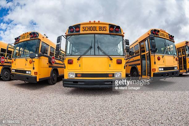 American School Buses