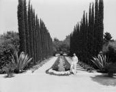 American silent era comedian harold lloyd in the garden of greenacres picture id71574044?s=170x170