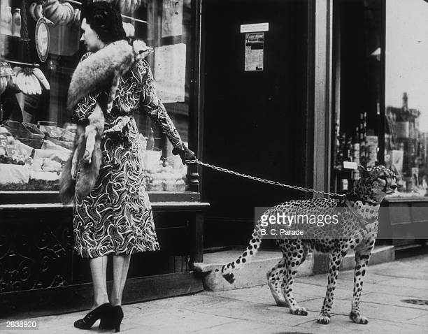 American silent film actress Phyllis Gordon windowshopping in Earls Court London with her fouryearold cheetah who was flown to Britain from Kenya