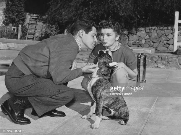 American singer and actor Eddie Fisher and American actress, singer and businesswoman Debbie Reynolds with their dog Charles, US, circa 1955.