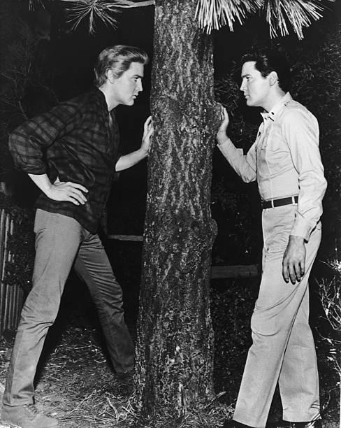Elvis And Elvis