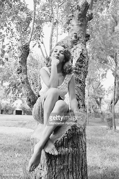 American singer and actress Abbe Lane sitting on a tree at the 19th Venice International Film Festival. Venice, August 1958