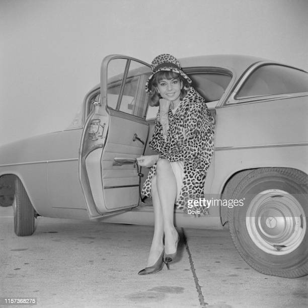 American singer and actress Abbe Lane wearing leopard coat and leopard hat as she sits in the back seat of a car with an open door, UK, 26th October...