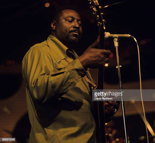 Albert King performs on stage at the New Orleans Jazz and Heritage Festival in New Orleans Louisiana on April 12 1973