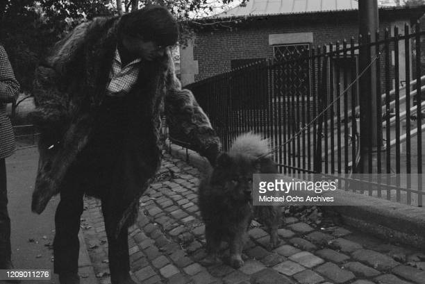 American singer and musician John Sebastian of rock band The Lovin' Spoonful stops to pat a dog in the street circa 1966