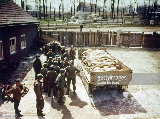American soldiers of the 80th Infantry Division are standing next to a pile of corpses on a trailer at Buchenwald concentration camp near Weimar 12th...
