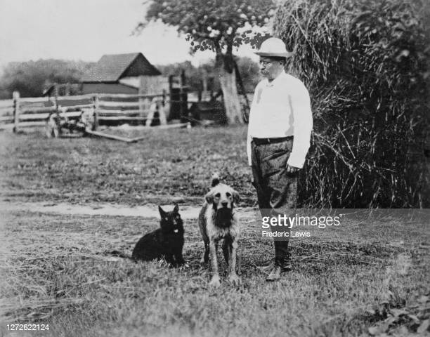 American statesman and politician Theodore Roosevelt , 26th President of the United States, with his dogs at a farm, US, 1905.