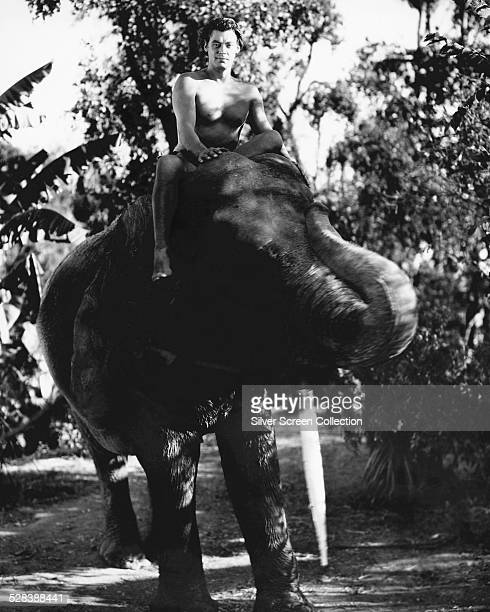 American swimmer and actor Johnny Weissmuller riding an elephant in a promotional still for one of his twelve 'Tarzan' films circa 1940