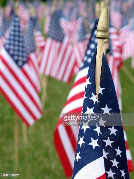 american tribute - 4th stock pictures, royalty-free photos & images