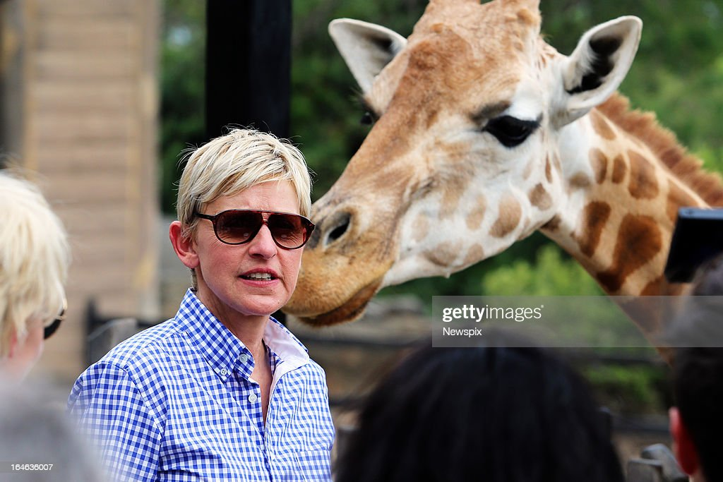 American TV personality Ellen DeGeneres and her wife, Australian actress Portia de Rossi feed the Giraffes at Taronga Zoo on March 22, 2013 in Sydney, Australia.