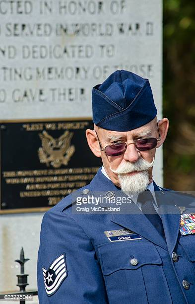 american veterans honored at a veteran's day cermony - air force memorial stock pictures, royalty-free photos & images