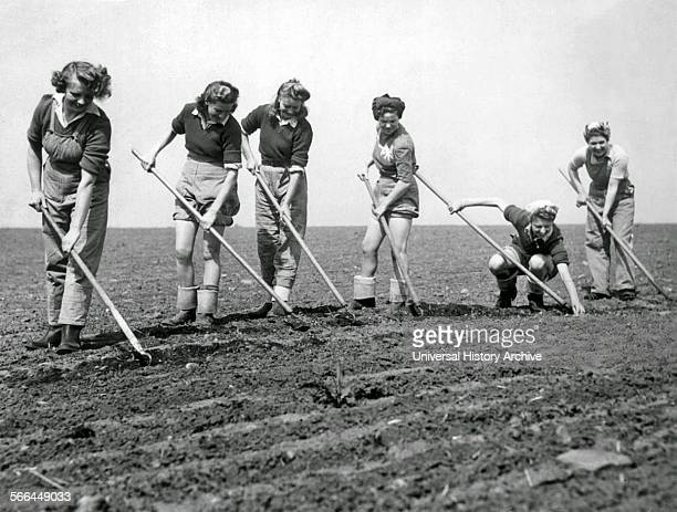 American women of the 'Land Army' work in farming during world War two USA 1942
