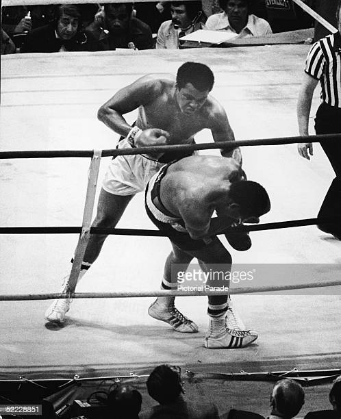 American world heavyweight champion Muhammad Ali stands over American challenger Jimmy Young as he hangs onto the ropes during the fourteenth round...