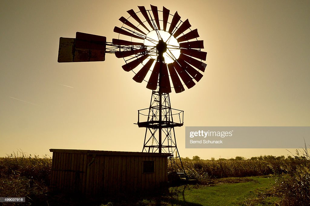 American-style windmill in backlight : Stock Photo
