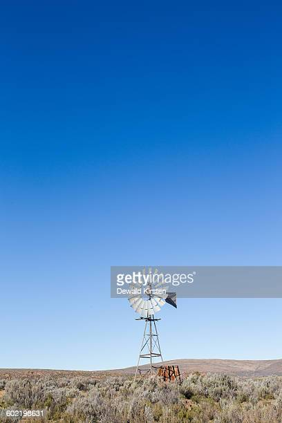 American-style windmill in field, Karoo, Breede Valley, Western Cape, South Africa